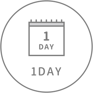 1DAY